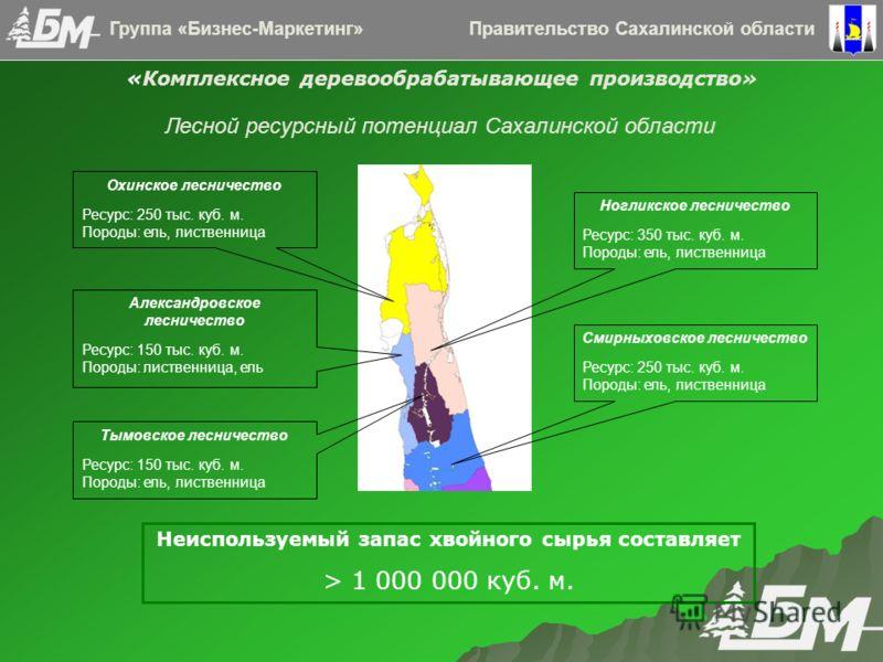 Правительство Сахалинской областиГруппа «Бизнес-Маркетинг» «Комплексное деревообрабатывающее производство» Ногликское лесничество Ресурс: 350 тыс. куб. м. Породы: ель, лиственница Тымовское лесничество Ресурс: 150 тыс. куб. м. Породы: ель, лиственниц