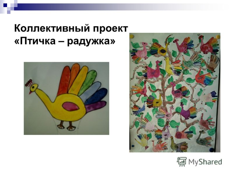 Коллективный проект «Птичка – радужка»