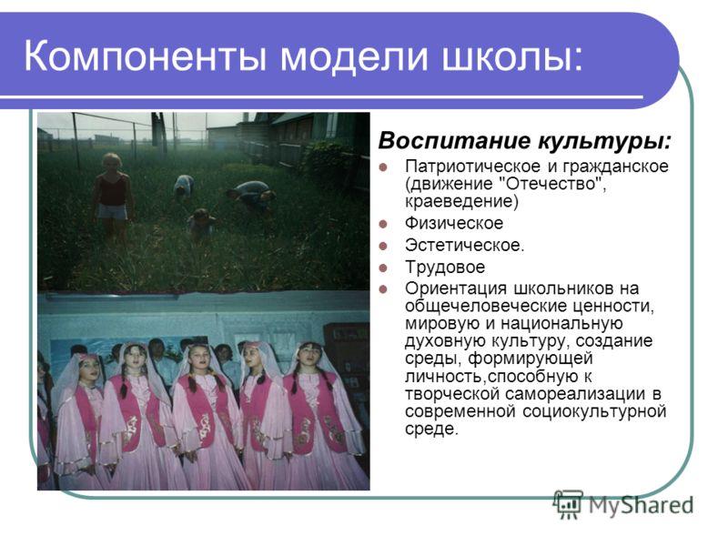Компоненты модели школы: Воспитание культуры: Патриотическое и гражданское (движение