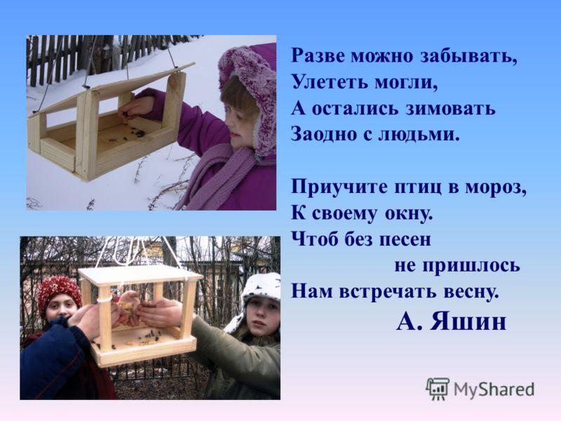 Разве можно забывать, Улететь могли, А остались зимовать Заодно с людьми. Приучите птиц в мороз, К своему окну. Чтоб без песен не пришлось Нам встречать весну. А. Яшин