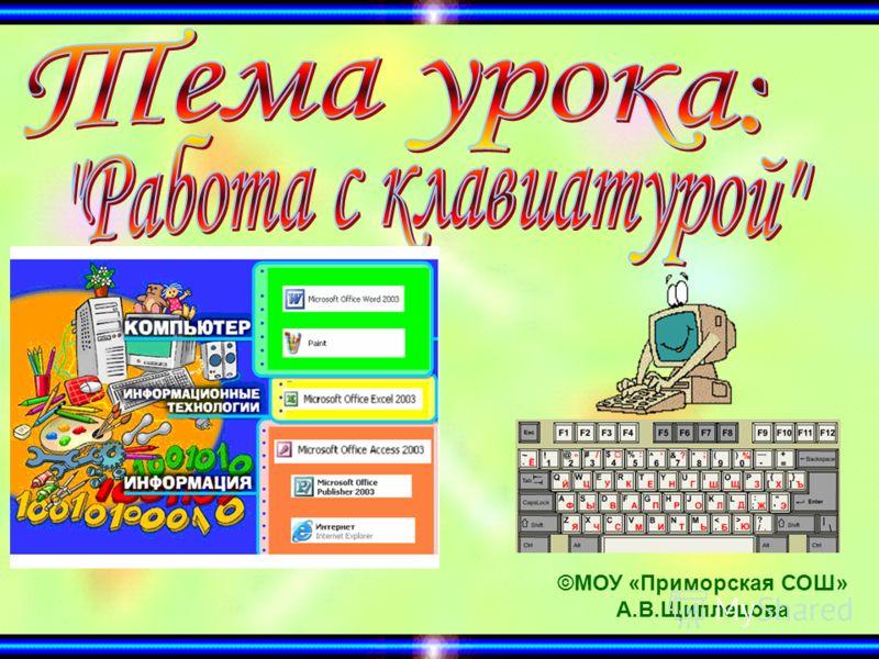 ©МОУ «Приморская СОШ» А.В.Щиплецова