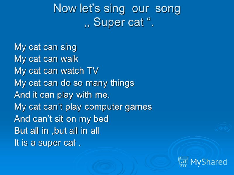 Now lets sing our song,, Super cat. My cat can sing My cat can walk My cat can watch TV My cat can do so many things And it can play with me. My cat cant play computer games And cant sit on my bed But all in,but all in all It is a super cat.