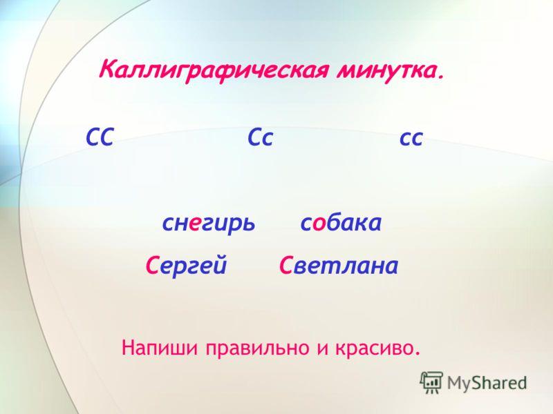 Каллиграфическая минутка. СС Сс сс снегирь собака Сергей Светлана Напиши правильно и красиво.