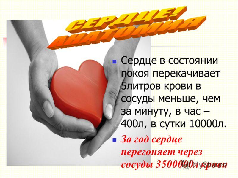 Сердце в состоянии покоя перекачивает 5литров крови в сосуды меньше, чем за минуту, в час – 400л, в сутки 10000л. За год сердце перегоняет через сосуды 3500000л крови