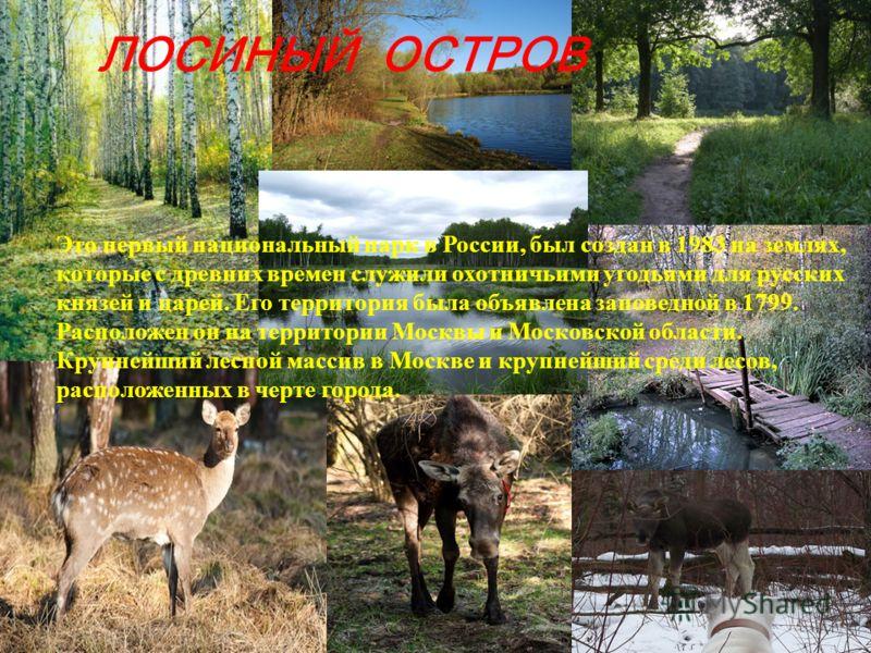ЛОСИНЫЙ ОСТРОВ Это первый национальный парк в России, был создан в 1983 на землях, которые с древних времен служили охотничьими угодьями для русских князей и царей. Его территория была объявлена заповедной в 1799. Расположен он на территории Москвы и