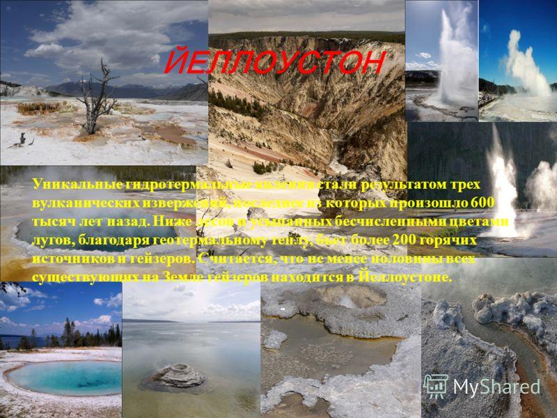 ЙЕЛЛОУСТОН Уникальные гидротермальные явления стали результатом трех вулканических извержений, последнее из которых произошло 600 тысяч лет назад. Ниже лесов и усыпанных бесчисленными цветами лугов, благодаря геотермальному теплу, бьет более 200 горя