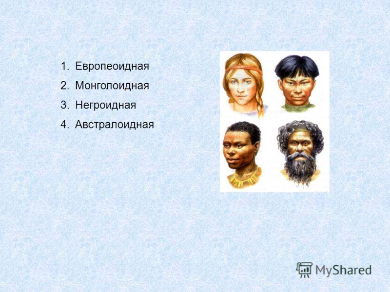 1.Европеоидная 2.Монголоидная 3.Негроидная 4.Австралоидная
