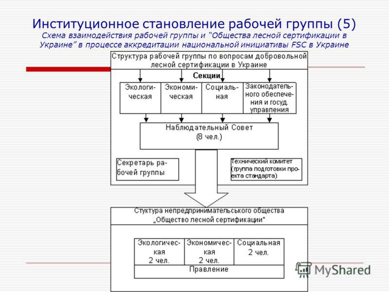 Институционное становление рабочей группы (5) Схема взаимодействия рабочей группы и Общества лесной сертификации в Украине в процессе аккредитации национальной инициативы FSC в Украине