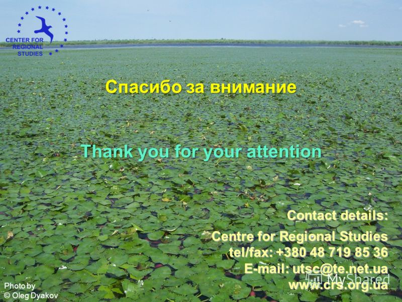 Contact details: Centre for Regional Studies tel/fax: +380 48 719 85 36 E-mail: utsc@te.net.ua www.crs.org.ua Спасибо за внимание Thank you for your attention Photo by © Oleg Dyakov