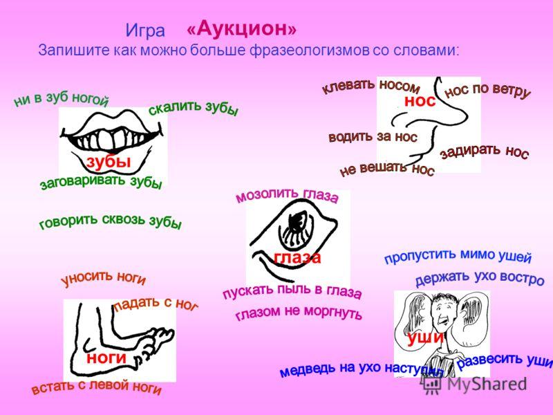 Запишите как можно больше фразеологизмов со словами: зубы нос глаза ноги уши Игра « Аукцион »