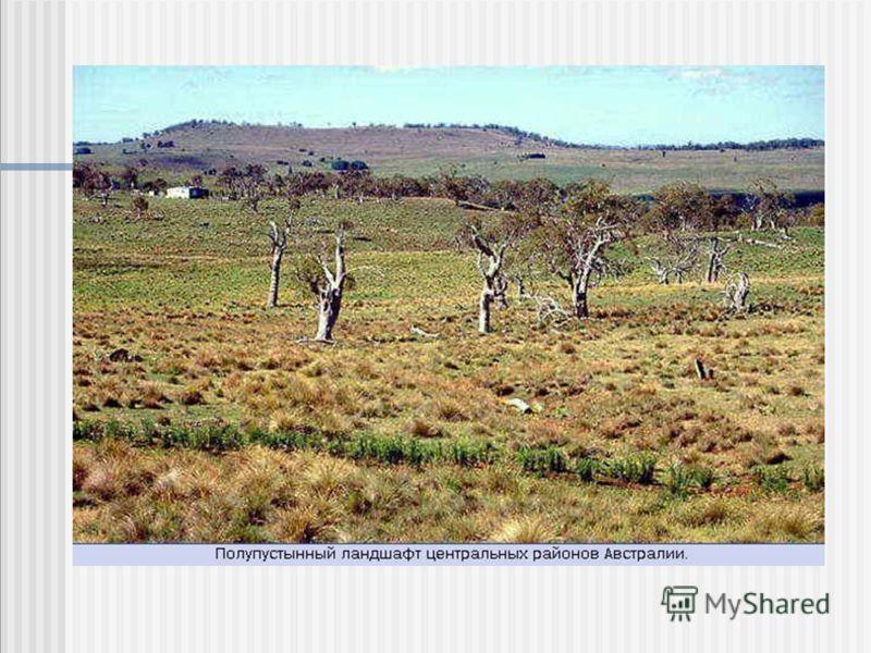 Скала Эйрс (Центральная Австралия