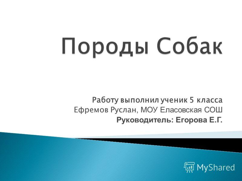 Работу выполнил ученик 5 класса Ефремов Руслан, МОУ Еласовская СОШ Руководитель: Егорова Е.Г.
