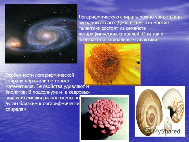 Логарифмическую спираль можно увидеть и в звездном атласе. Дело в том, что многие галактики состоят из семейств логарифмических спиралей. Они так и называются: спиральные галактики. Особенности логарифмической спирали поражали не только математиков.