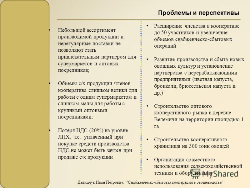Проблемы и перспективы Давидчук Иван Петрович,