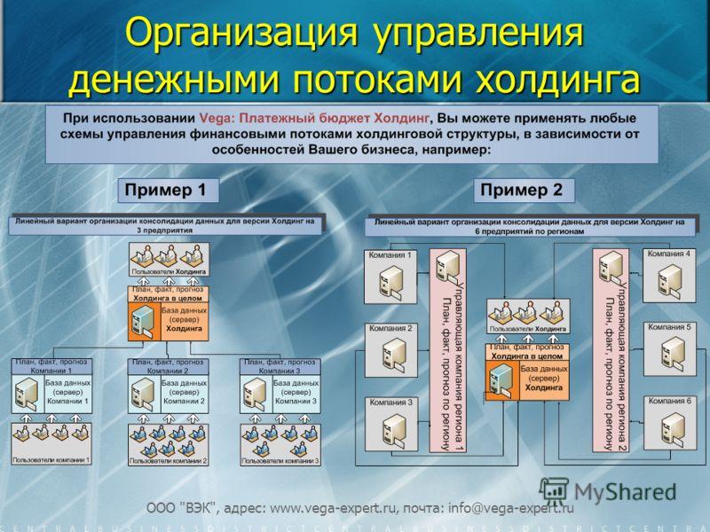 ООО ВЭК, адрес: www.vega-expert.ru, почта: info@vega-expert.ru Организация управления денежными потоками холдинга