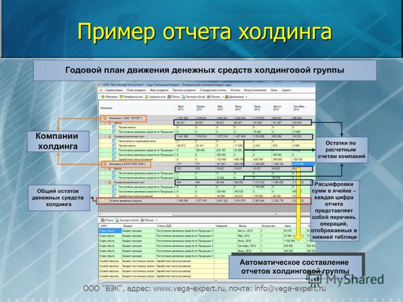 ООО ВЭК, адрес: www.vega-expert.ru, почта: info@vega-expert.ru Пример отчета холдинга