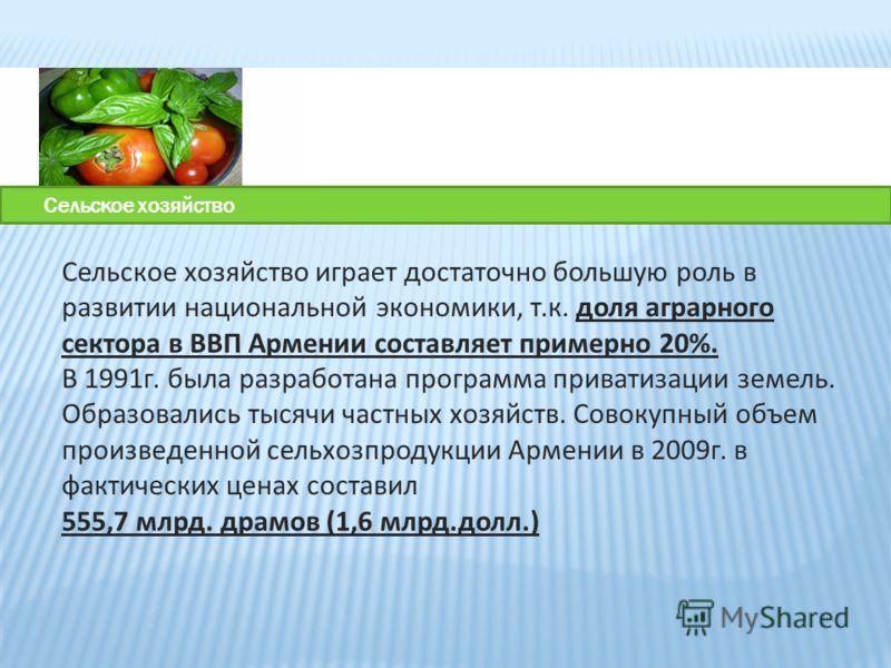 Сельское хозяйство играет достаточно большую роль в развитии национальной экономики, т.к. доля аграрного сектора в ВВП Армении составляет примерно 20%. В 1991г. была разработана программа приватизации земель. Образовались тысячи частных хозяйств. Сов