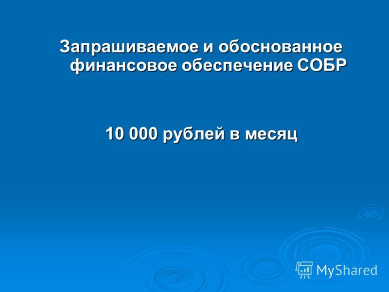 Запрашиваемое и обоснованное финансовое обеспечение СОБР 10 000 рублей в месяц