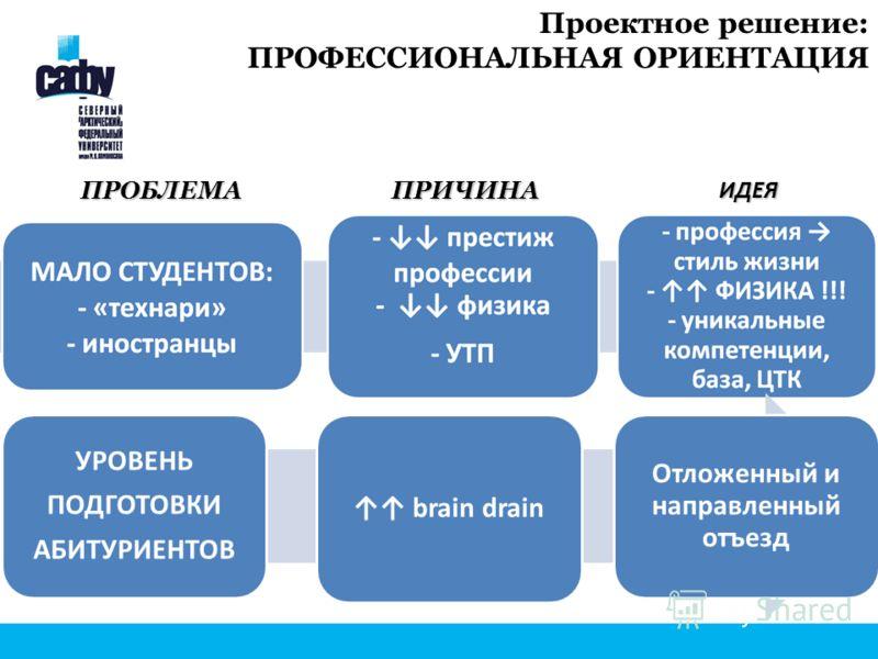 Проектное решение: ПРОФЕССИОНАЛЬНАЯ ОРИЕНТАЦИЯ УРОВЕНЬ ПОДГОТОВКИ АБИТУРИЕНТОВ brain drain Отложенный и направленный отъезд ПРОБЛЕМАПРИЧИНАИДЕЯ
