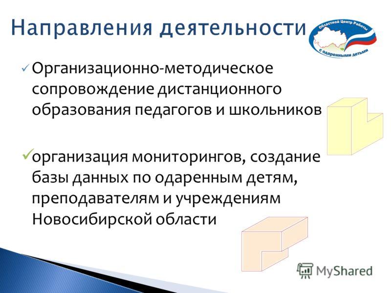 Организационно-методическое сопровождение дистанционного образования педагогов и школьников организация мониторингов, создание базы данных по одаренным детям, преподавателям и учреждениям Новосибирской области