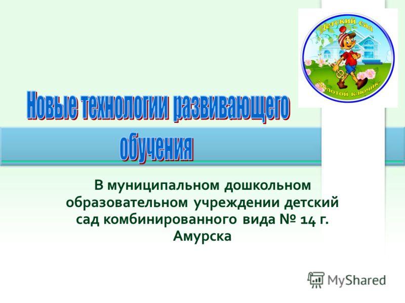В муниципальном дошкольном образовательном учреждении детский сад комбинированного вида 14 г. Амурска