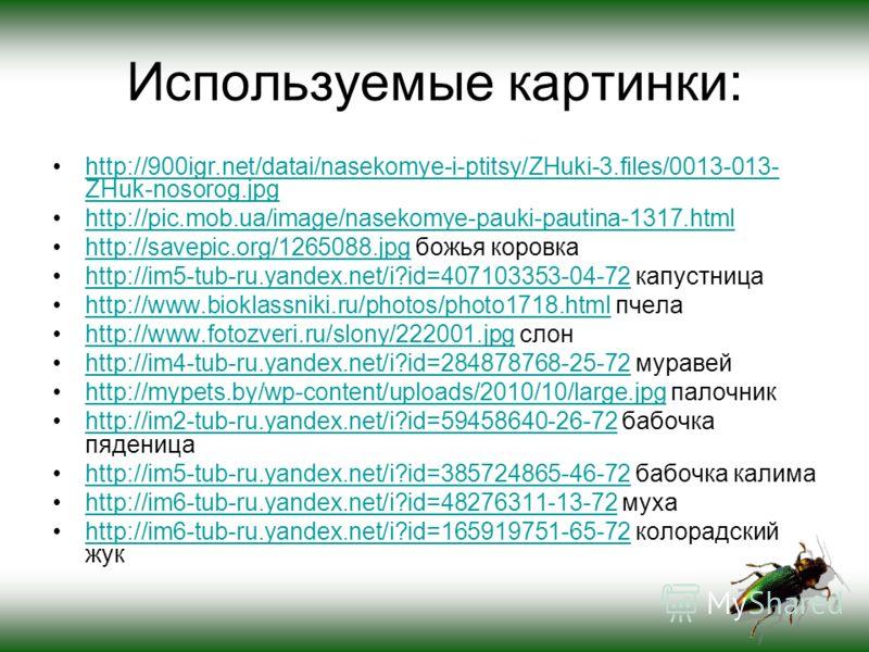 Используемые картинки: http://900igr.net/datai/nasekomye-i-ptitsy/ZHuki-3.files/0013-013- ZHuk-nosorog.jpghttp://900igr.net/datai/nasekomye-i-ptitsy/ZHuki-3.files/0013-013- ZHuk-nosorog.jpg http://pic.mob.ua/image/nasekomye-pauki-pautina-1317.html ht