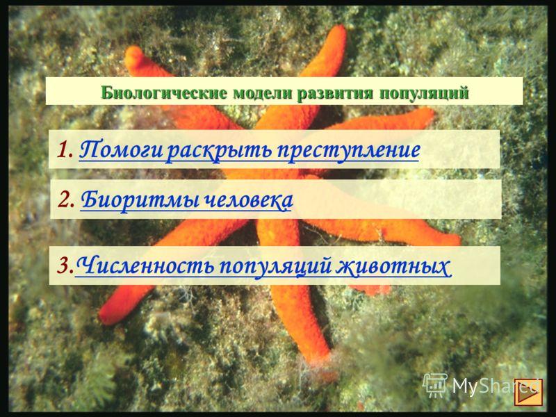 биоритмы рыбалки