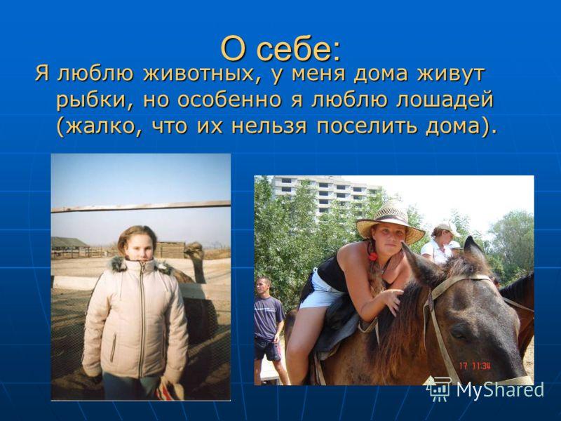 О себе: Я люблю животных, у меня дома живут рыбки, но особенно я люблю лошадей (жалко, что их нельзя поселить дома).