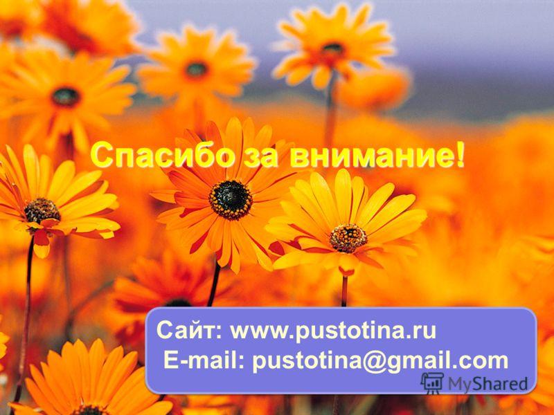 Спасибо за внимание! Сайт: www.pustotina.ru E-mail: pustotina@gmail.com Сайт: www.pustotina.ru E-mail: pustotina@gmail.com