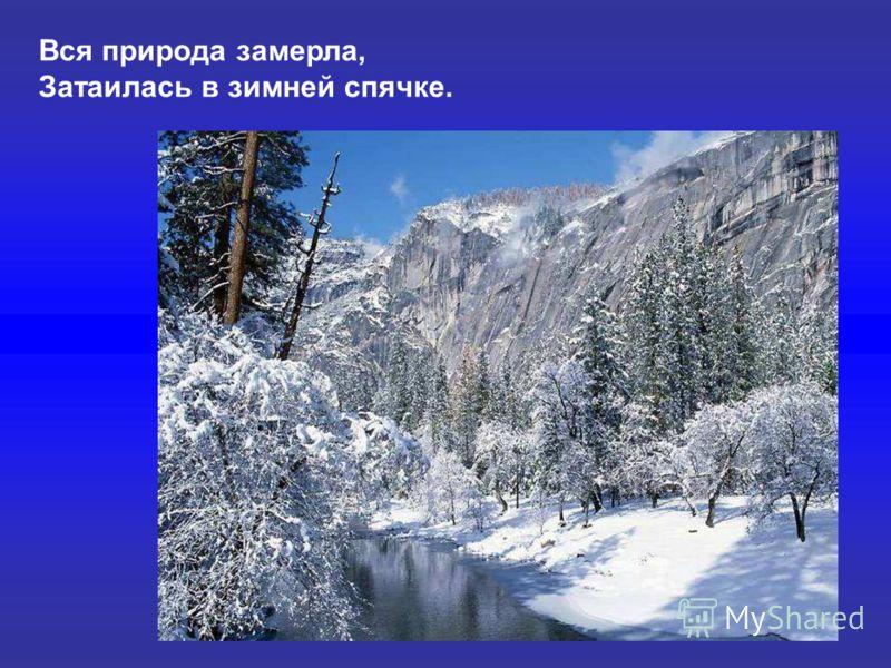 Вся природа замерла, Затаилась в зимней спячке. Вся природа замерла, затаилась в зимней спячке.