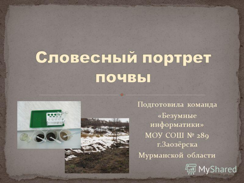 Подготовила команда «Безумные информатики» МОУ СОШ 289 г.Заозёрска Мурманской области