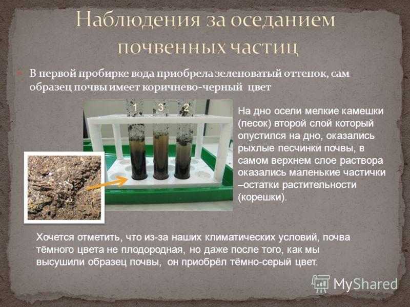 В первой пробирке вода приобрела зеленоватый оттенок, сам образец почвы имеет коричнево-черный цвет На дно осели мелкие камешки (песок) второй слой который опустился на дно, оказались рыхлые песчинки почвы, в самом верхнем слое раствора оказались мал