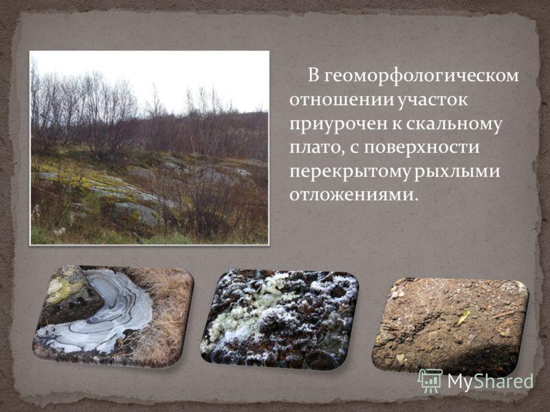 В геоморфологическом отношении участок приурочен к скальному плато, с поверхности перекрытому рыхлыми отложениями.