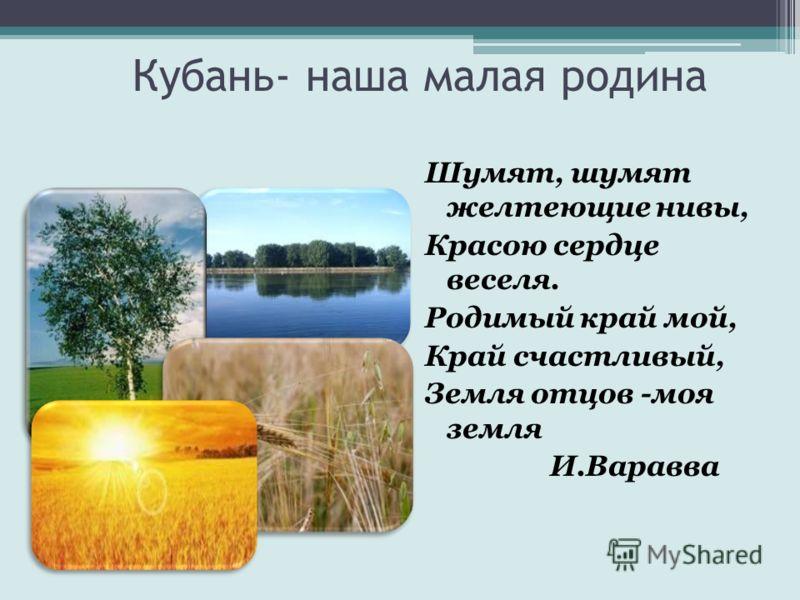 Кубань- наша малая родина Шумят, шумят желтеющие нивы, Красою сердце веселя. Родимый край мой, Край счастливый, Земля отцов -моя земля И.Варавва
