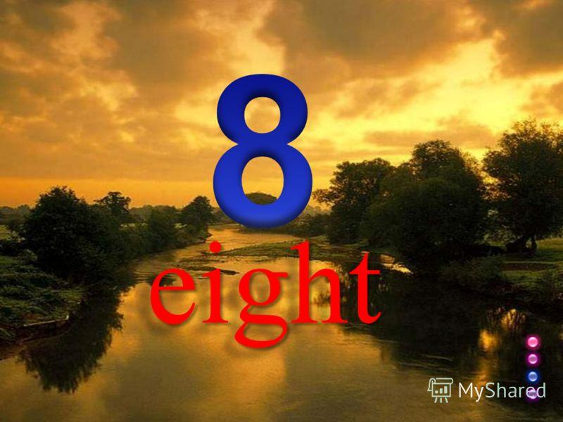 eight eight
