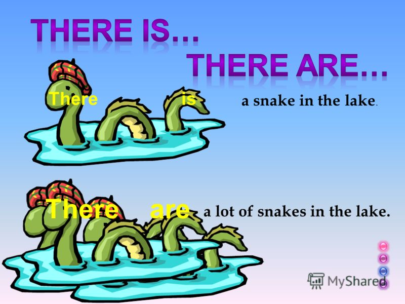 There is a snake in the lake. a lot of snakes in the lake. Thereare