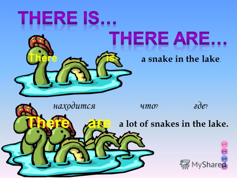 There is a snake in the lake. a lot of snakes in the lake. что ? где ? находится Thereare