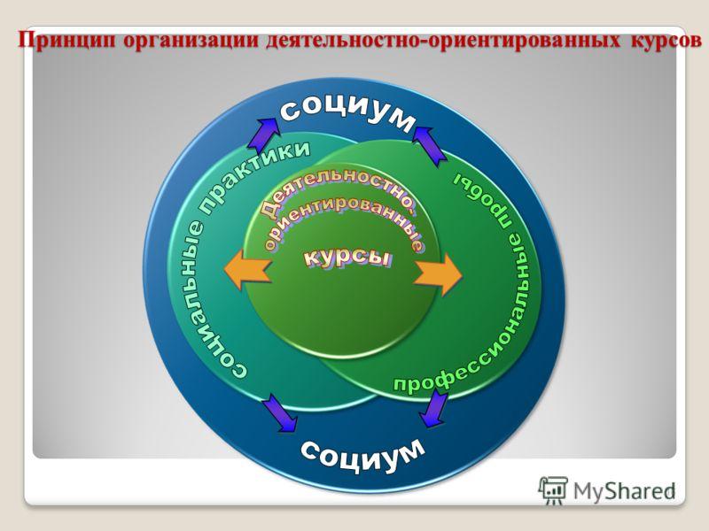 Принцип организации деятельностно-ориентированных курсов 16