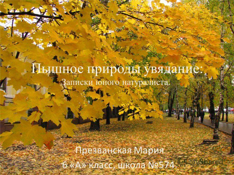 Пышное природы увядание: Записки юного натуралиста.. Презванская Мария 6 «А» класс, школа 574.