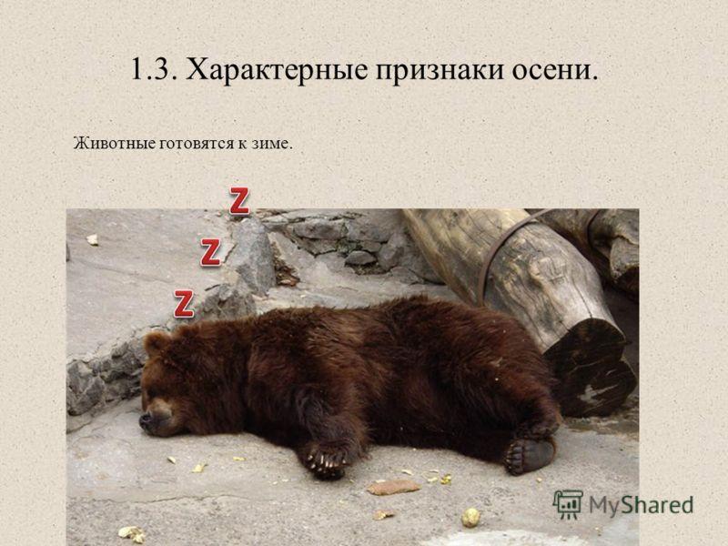 1.3. Характерные признаки осени. Животные готовятся к зиме.