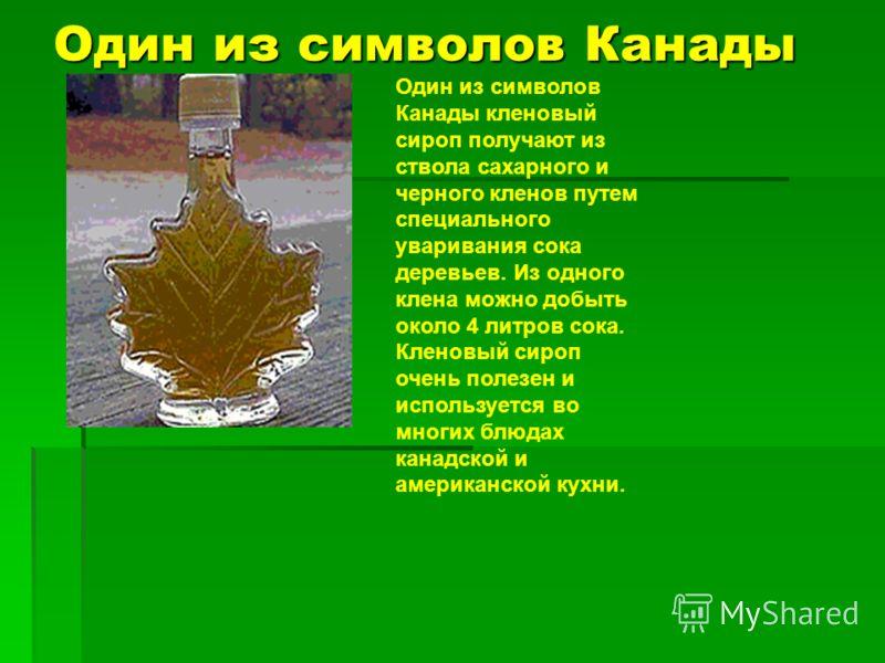 Один из символов Канады Один из символов Канады кленовый сироп получают из ствола сахарного и черного кленов путем специального уваривания сока деревьев. Из одного клена можно добыть около 4 литров сока. Кленовый сироп очень полезен и используется во
