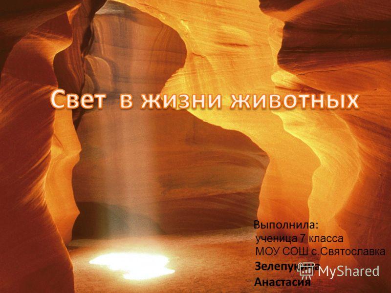Выполнила: ученица 7 класса МОУ СОШ с.Святославка Зелепукина Анастасия