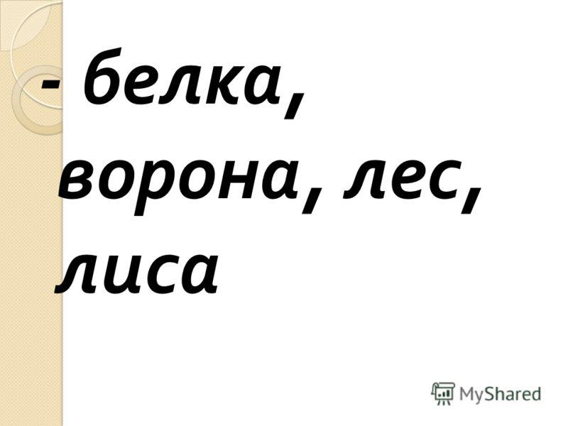 - белка, ворона, лес, лиса