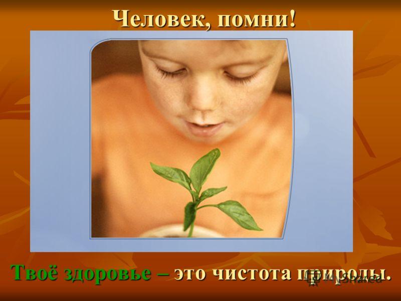 Человек, помни! Твоё здоровье – это чистота природы.