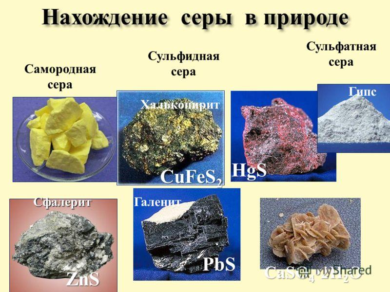 Нахождение серы в природе Самородная сера Сульфидная сера Сульфатная сера Киноварь HgS PbS Галенит CuFeS 2 Халькопирит Сфалерит ZnS Гипс CaSO 4 2H 2 O