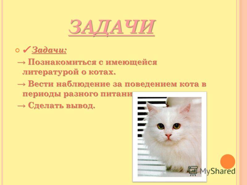 ЗАДАЧИ ЗАДАЧИ Задачи: Познакомиться с имеющейся литературой о котах. Познакомиться с имеющейся литературой о котах. Вести наблюдение за поведением кота в периоды разного питания. Вести наблюдение за поведением кота в периоды разного питания. Сделать
