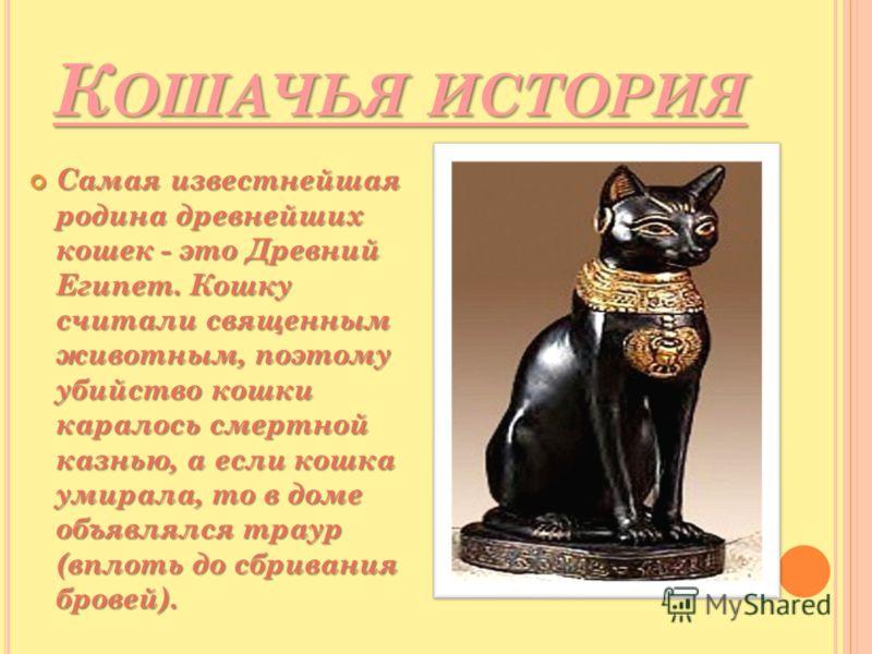 К ОШАЧЬЯ ИСТОРИЯ Самая известнейшая родина древнейших кошек - это Древний Египет. Кошку считали священным животным, поэтому убийство кошки каралось смертной казнью, а если кошка умирала, то в доме объявлялся траур (вплоть до сбривания бровей). Самая