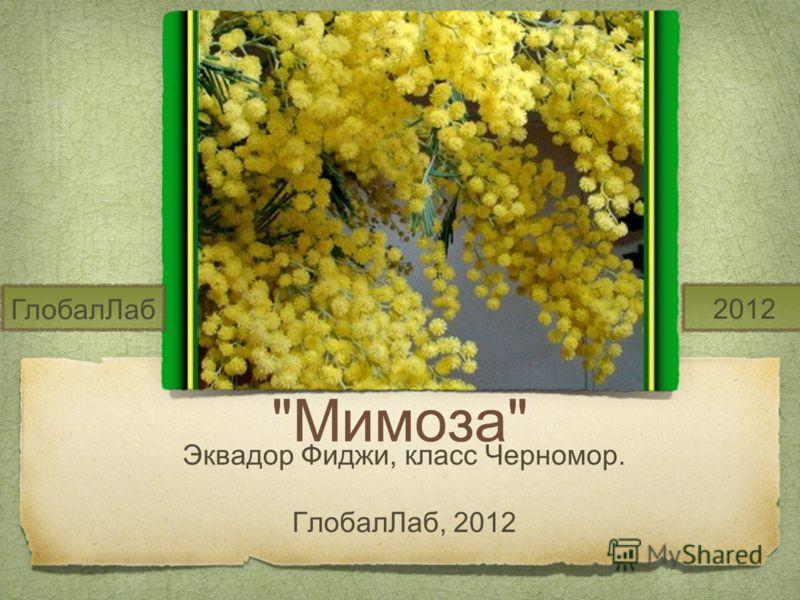 Мимоза Эквадор Фиджи, класс Черномор. ГлобалЛаб, 2012 ГлобалЛаб 2012
