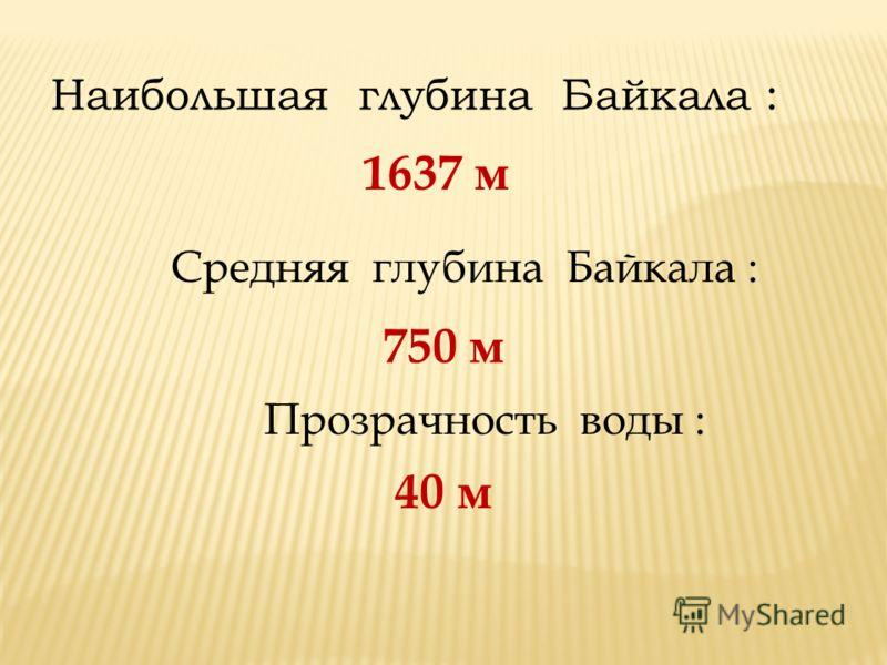 Наибольшая глубина Байкала : 1637 м Средняя глубина Байкала : 750 м Прозрачность воды : 40 м