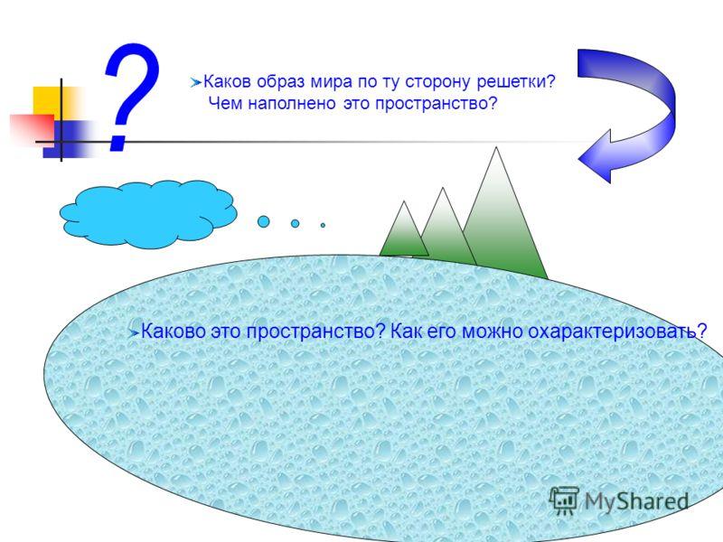 Каков образ мира по ту сторону решетки? Чем наполнено это пространство? Каково это пространство? Как его можно охарактеризовать?